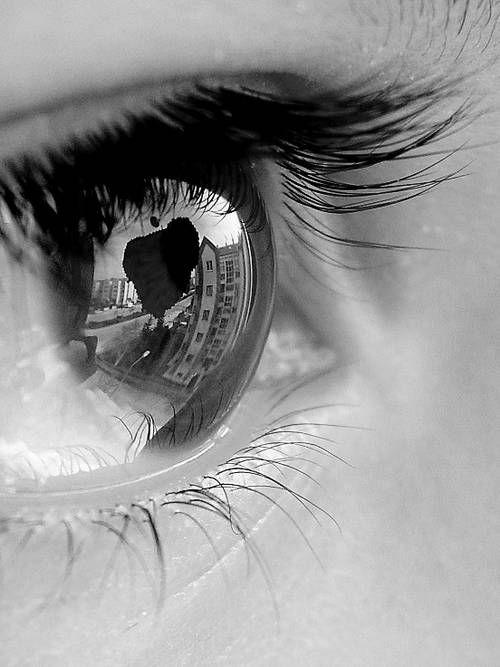 201 20 Beautiful Examples Of Macro Eye Photography