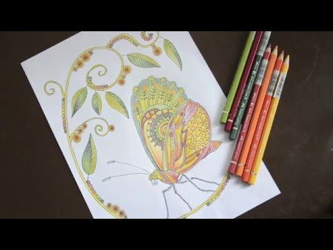 How to color a Butterfly :-) Butterfly - Coloring Page for Adults