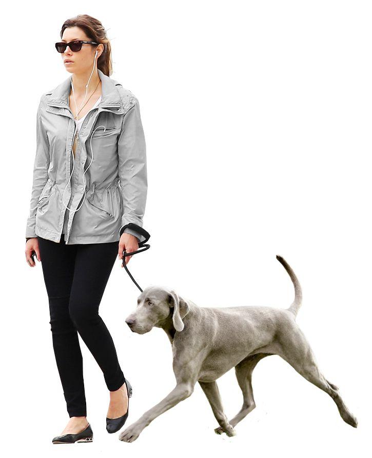 woman dog gray