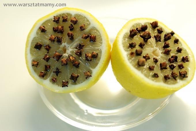 Bekijk de foto van emys met als titel prik kruidnagel in een halve citroen en de wespen blijven weg, die hebben een hekel aan deze geur. en andere inspirerende plaatjes op Welke.nl.