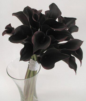 Love this dark twist on the traditional bunch of flowers for your wedding day. - unique black wedding bouquets
