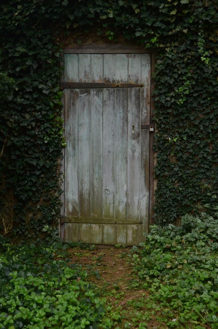 13 best Cellar Door images on Pinterest | Cellar doors ...