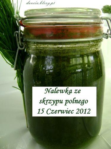 Zdrowe włosy, skóra i paznokcie, to skrzyp polny - Jagody leśne, zioła ogrodowe, dzikie zioła i owoce - LEŚNY ZAKĄTEK - bloog.pl