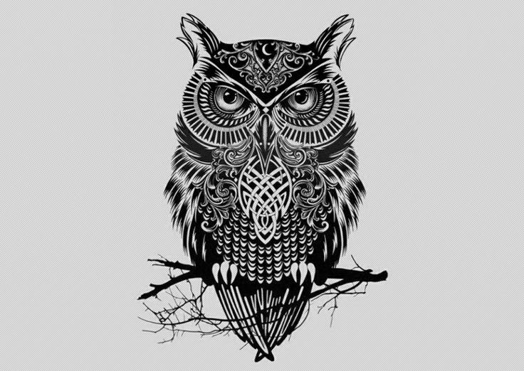Aseanpeople Me Nbspthis Website Is For Sale Nbspaseanpeople Resources And Information Tribal Owl Tattoos Celtic Owl Tattoo Design Owl Tattoo Drawings