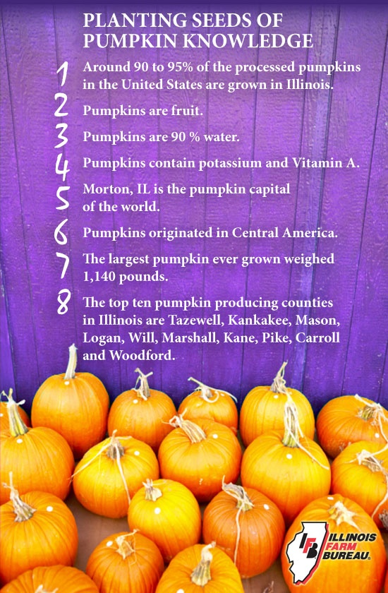 Plenty of Pumpkin Facts!!