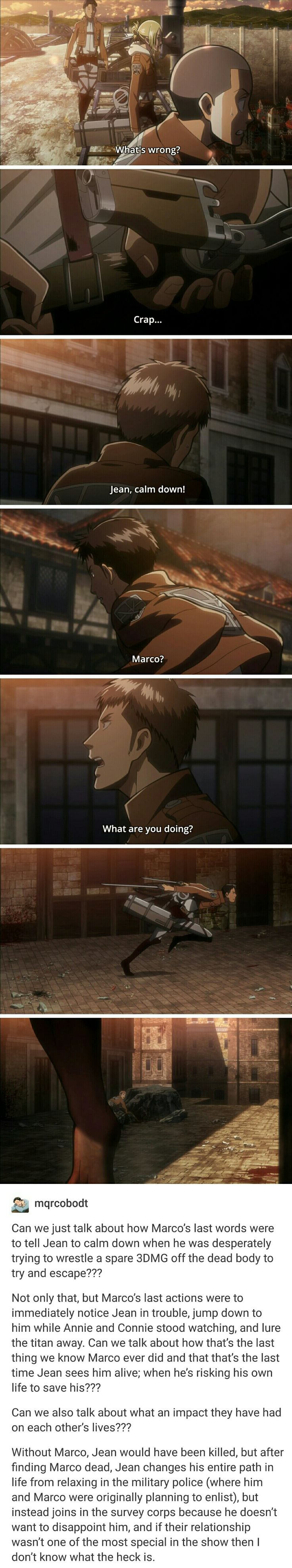 Aww | Attack on Titan | Jean . Marco