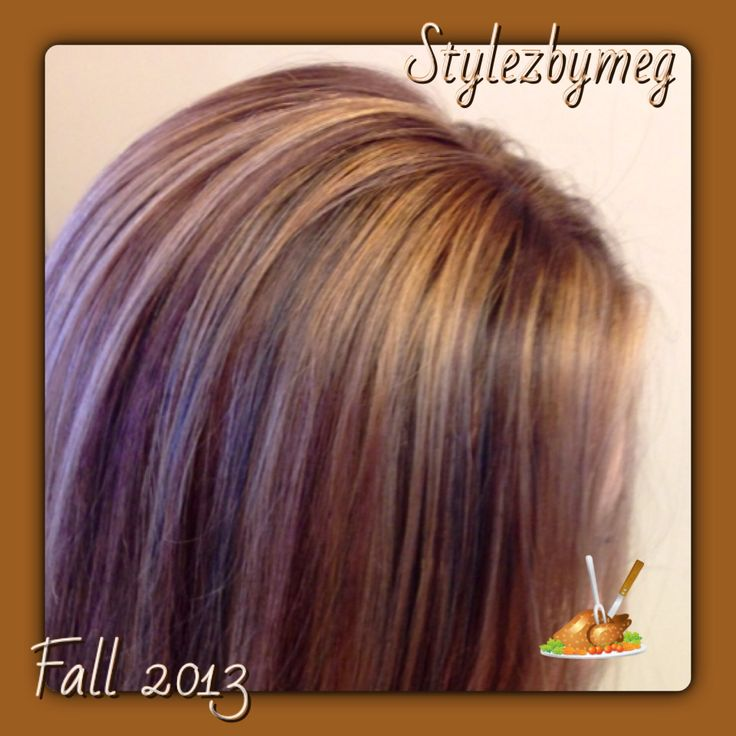 Lots Of Pretty Fall Lowlights Fall Hair Highlights Toned And Tricolore