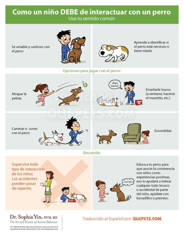 como-un-niño-debe-interactuar-con-un-perro #mascotas #infografia#pet #infographic
