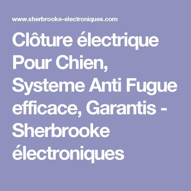 Clôture électrique Pour Chien, Systeme Anti Fugue efficace, Garantis - Sherbrooke électroniques