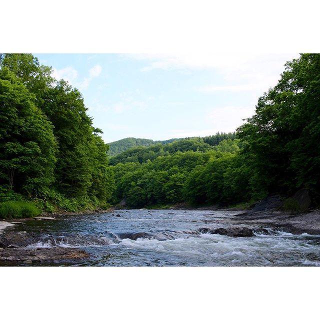 【toshitaka_gram】さんのInstagramをピンしています。 《北の大地の秋の実りを奪い取った今回の台風….😡 やれやれと思ったら金曜日から全道的に雨模様…😨 全く、勘弁してくれよ〜😢 #川#森#木#緑 #自然#自然大好き #自然いっぱい #アウトドア #過去pic#tbt #river#forest #woods#trees #green#outdoors #nature#naturelovers》
