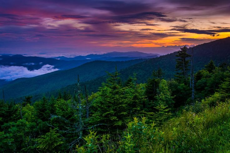 Good night from all of us at Amazing Views Cabin Rentals!