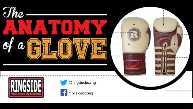 The Anatomy of a Boxing Glove - Ringside Boxing by RingsideBoxing via slideshare