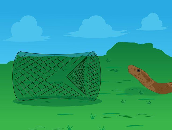 How to Keep Snakes Away -- via wikiHow.com
