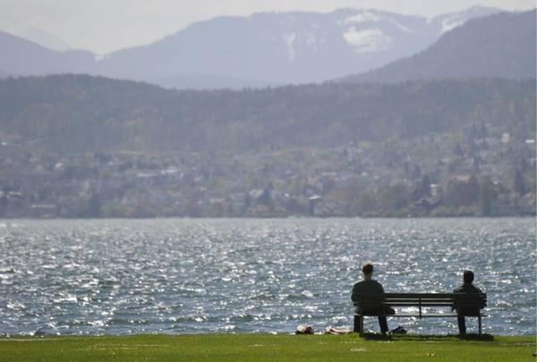 Lake. Lago di Zurigo