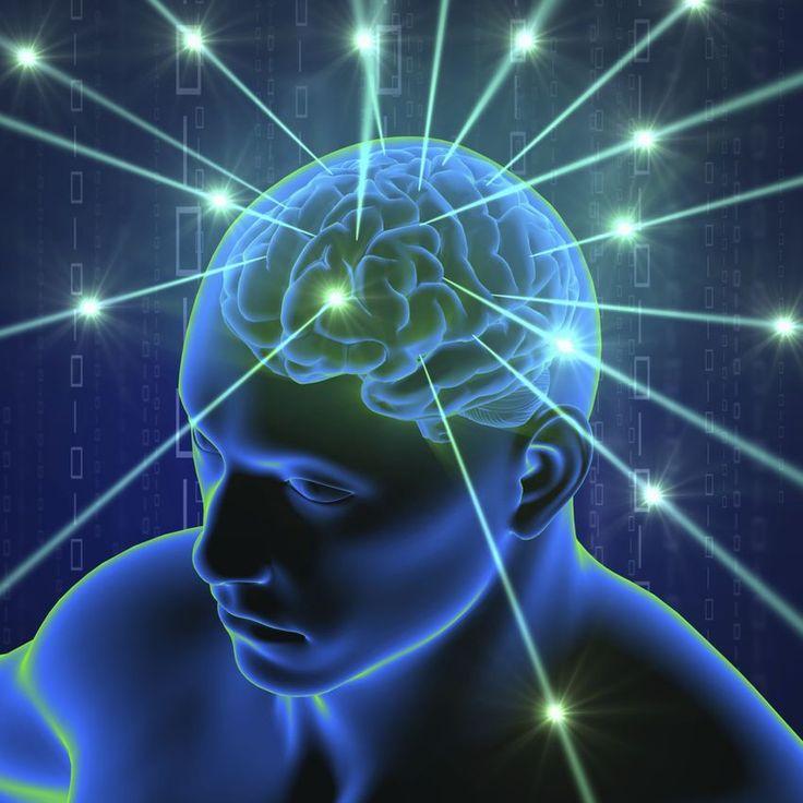 Así funciona el cerebro cuando aprende