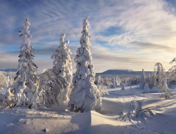 Зимняя сказка. ГУХ. 8. 01. 2016. -35. фото:А.Базуев