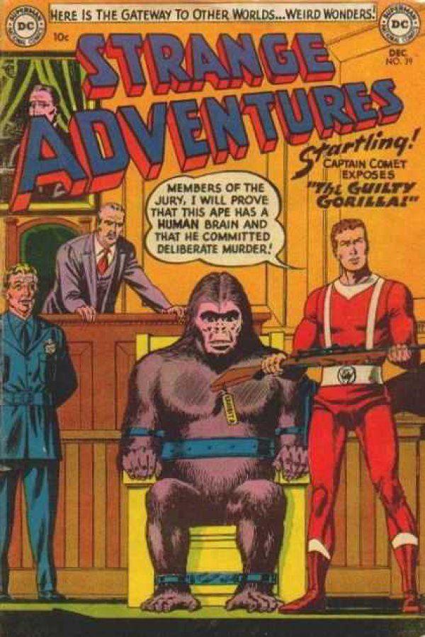 """The Guilty Gorilla!"""