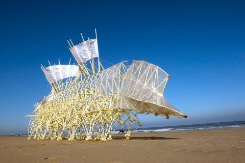 Strandbeest, a sculpture that walks over the beach on wind-energy, made by Theo Jansen