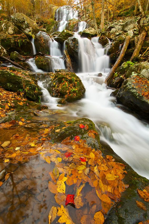Dark Hollow Falls in Shenandoah National Park, Virginia.