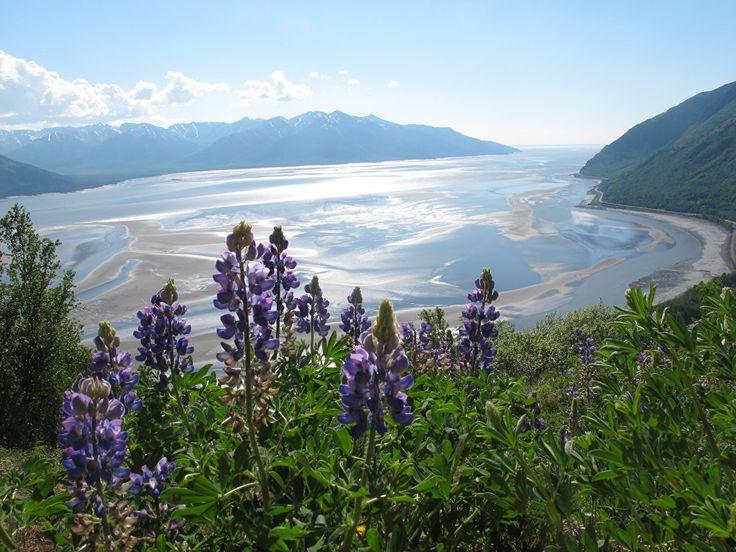 Take a Virtual Journey to Majestic Alaska