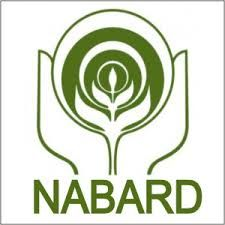 NABARD hiring Assistant Manager for 2015
