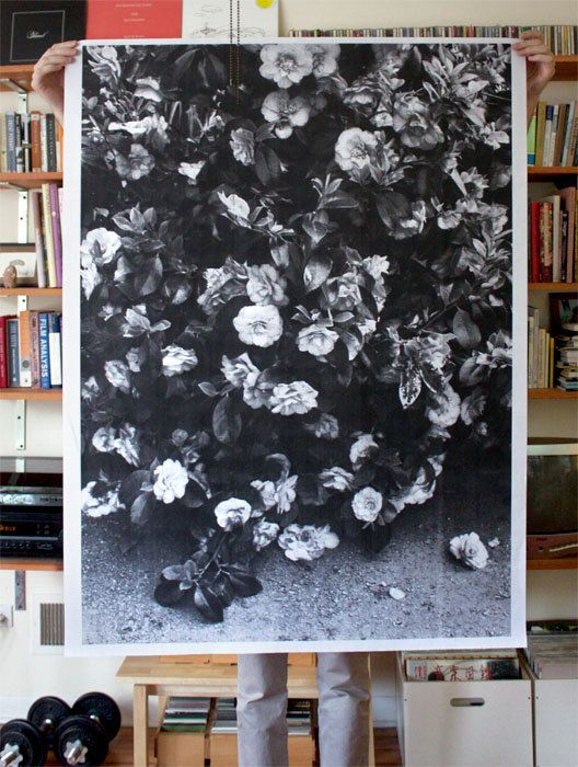 B/W poster approx. 36x 48, printed in halftone on 24 lb bond paper. All posters are printed on a plotter, a large format printer mainly used to