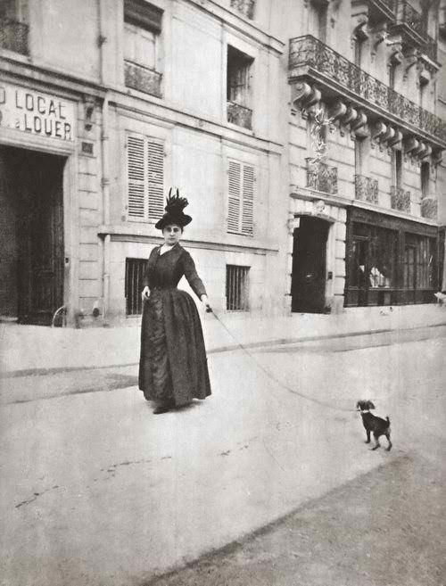 Walking the dog - Vintage Photo from Turn of the Century 1900's Toy Breed, Min Pin, Chihuahua