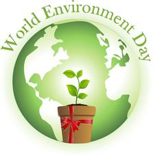 The Best Resources For World Environment Day