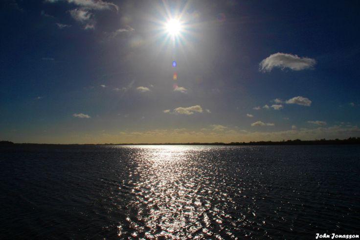 Hammarsjön och en snok