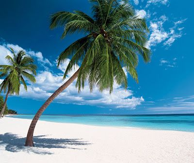 Dominican Republic. What a beautiful place to go to!
