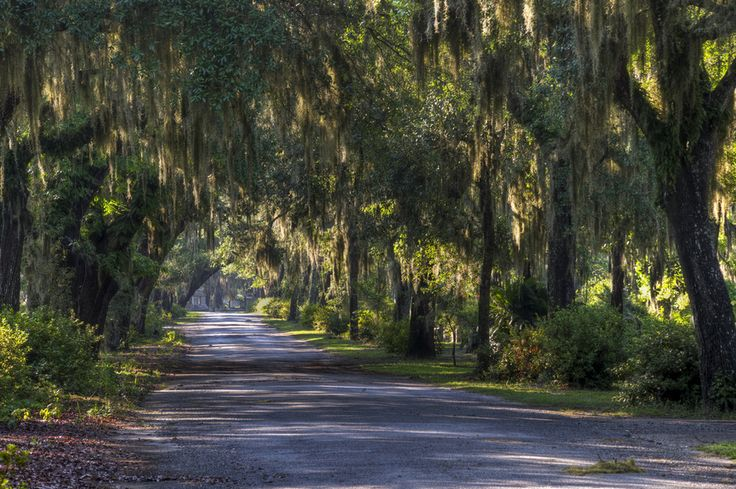 Savannah, Georgia | 29 Surreal Places In America You Need To Visit Before You Die