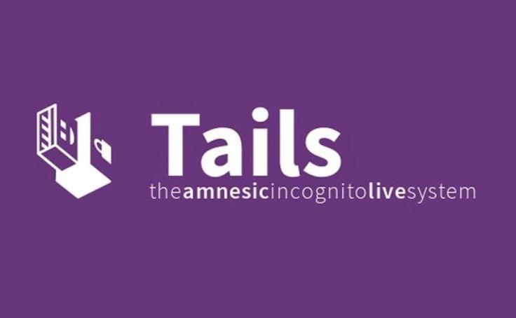 Η ΑΠΟΚΑΛΥΨΗ ΤΟΥ ΕΝΑΤΟΥ ΚΥΜΑΤΟΣ: Tails 2.6 RC1 περιηγηθείτε ανώνυμα στο Διαδίκτυο