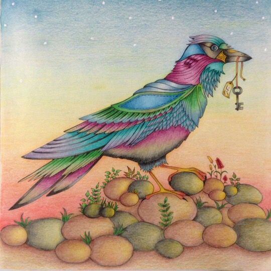 26 Best Bird Enchanted Forest Passaro Floresta Encantada Images