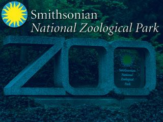 smithsonian zoo memorial day hours