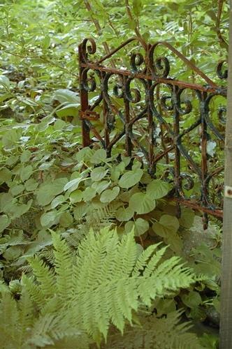 Garden gate... wonderful adventures await in this garden