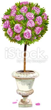 watercolor topiary Royalty Free Stock Photo