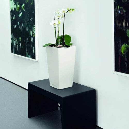 17 Best Images About Inside Plants On Pinterest Steel Columns And Planters