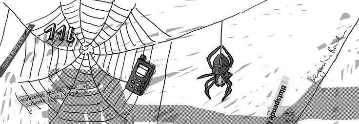 Das Spinnennetz der Kreuzspinne Araneus kommt in ...
