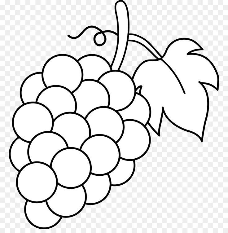 Image result for vine leaf Fruit clipart, Fruit coloring