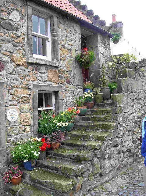 Stone house with perfect flowers   Fife, Scotland