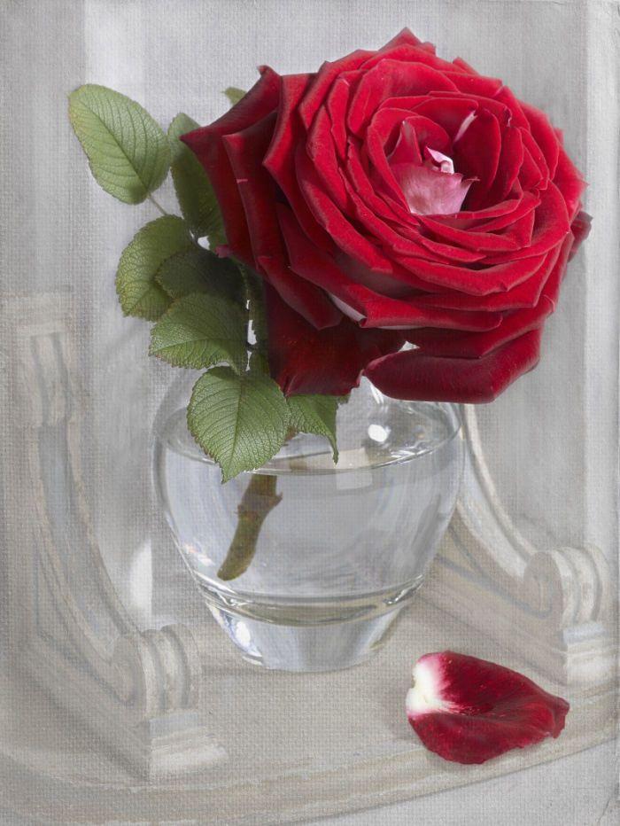 Marianna Lokshina - Rose_LMN32012