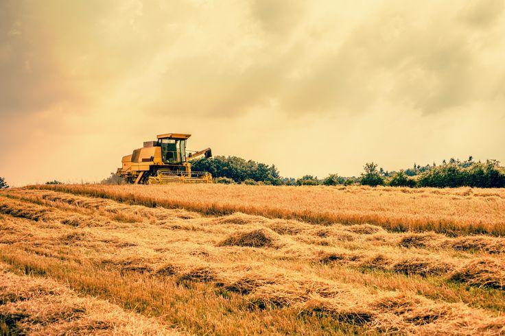 Photograph Harvester by Kasper Nymann on 500px
