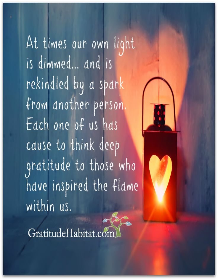 With deep gratitude to those who inspire out light. Visit us at: www.GratitudeHabitat.com