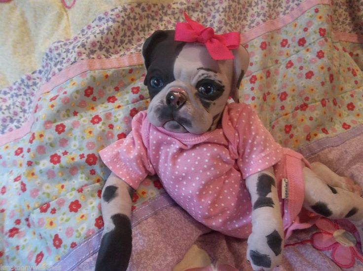 21 best images about Reborn puppies on Pinterest