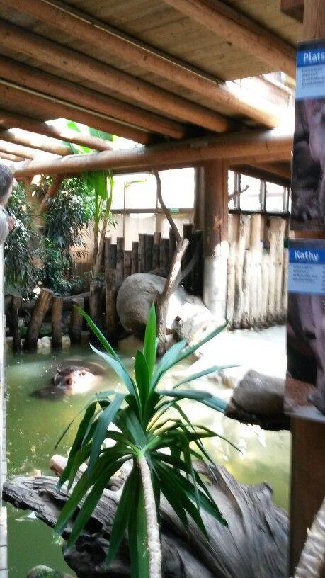 Vintage Karlsruhe Zoologischer Stadtgarten