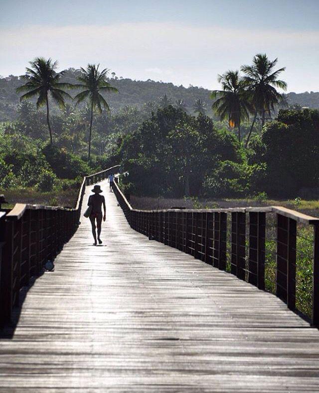 Bahia é meu estado do ❤️, adoro cada cantinho. Tenho certeza que deveria ter nascido baiana. Essa foto é da ponte sobre o mangue do hotel e resort Grand Palladium Imbassaí até a praia. Imbassaí fica a 10km da Praia do Forte, pertinho de Salvador.