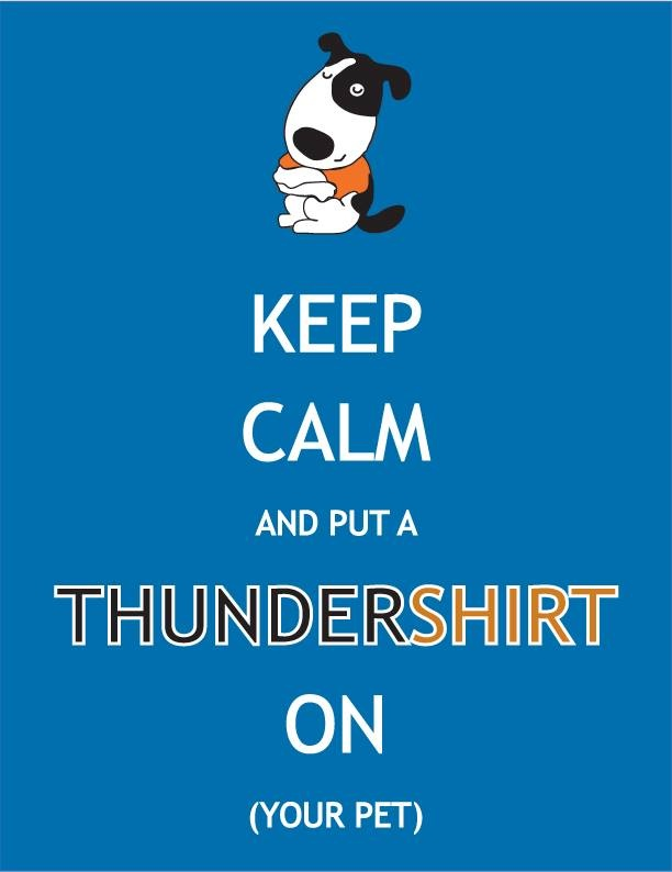 Keep Calm this Storm and Fireworks Season!