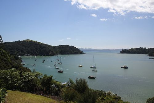 First impressions, by chestnutgrey.  Mangonui...