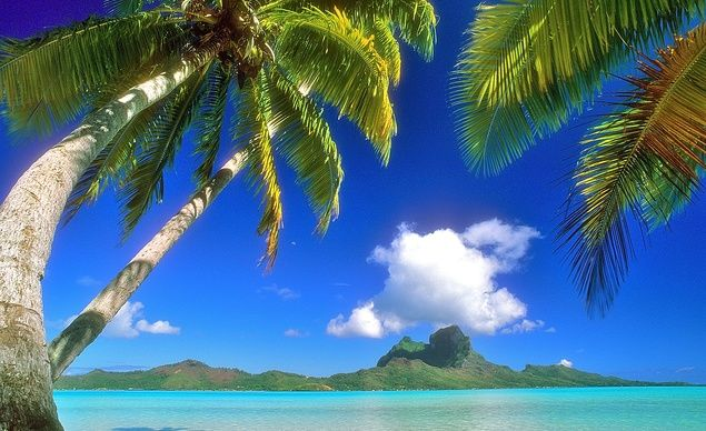 """""""Bora Bora."""" —Patti Norcisa Warnemuende (Courtesy frogsaver/myBudgetTravel) From: 30 Beautiful Beaches You Want To Be On Now."""