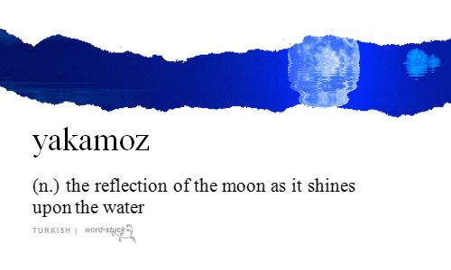 yakamoz | (n.) | the reflection of the moon as it shines upon the water | turkish | #wordstoliveby